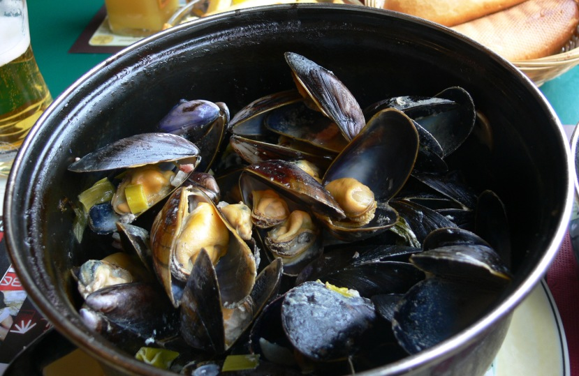 Moules_as_served_in_France