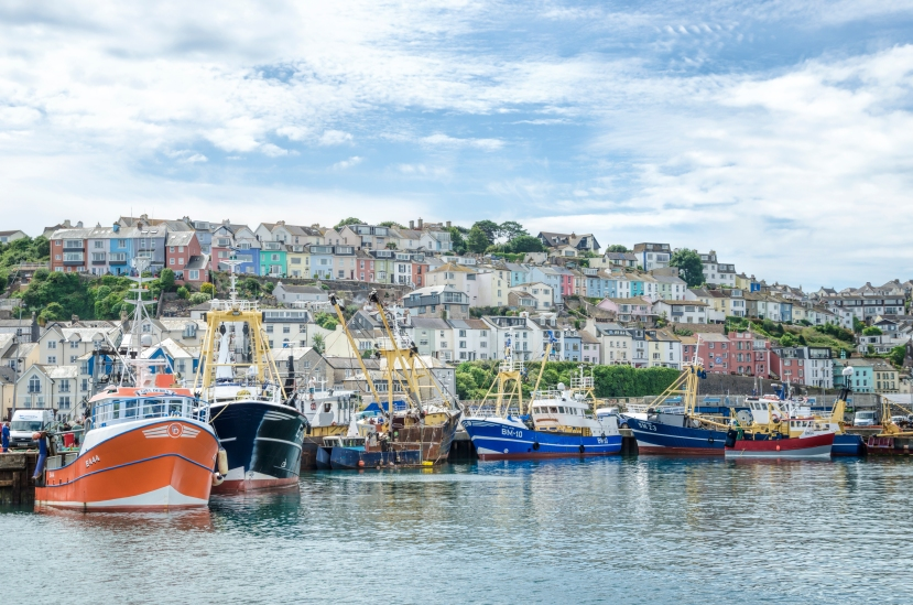 Brixham and trawlers