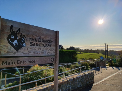 The donkey sanctuary sign with sun rise